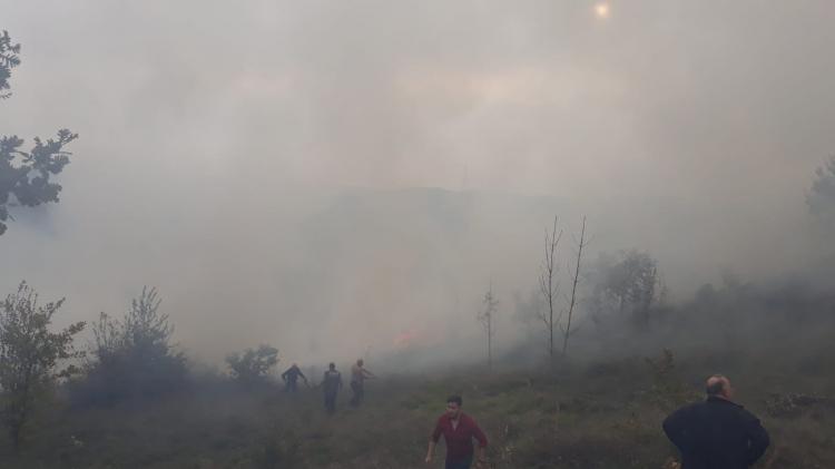 1.5 Hektar Alan Yandı