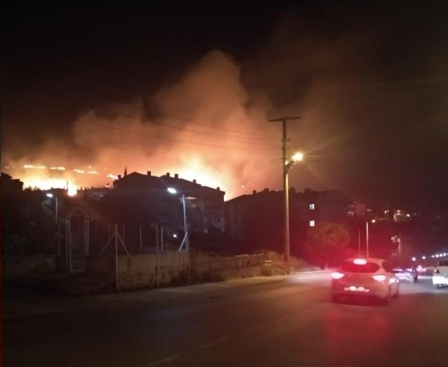 Armutlu'da Korkutan Orman Yangını