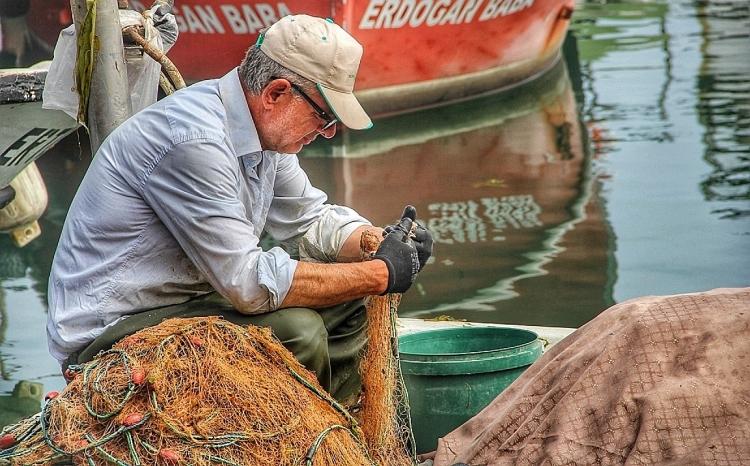 Balık Avı Sezonu Yarın Başlıyor