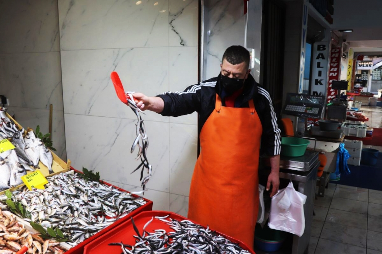 Balık Fiyatları El Yakmaya Devam Ediyor