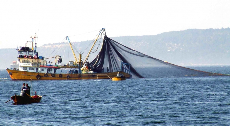 Balıkçılar Sezondan Umutlu