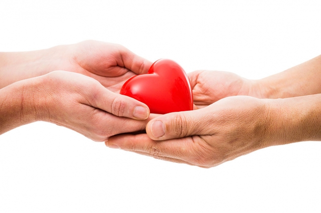 Bin 334 Hasta Organ Nakli İle Hayata Döndü