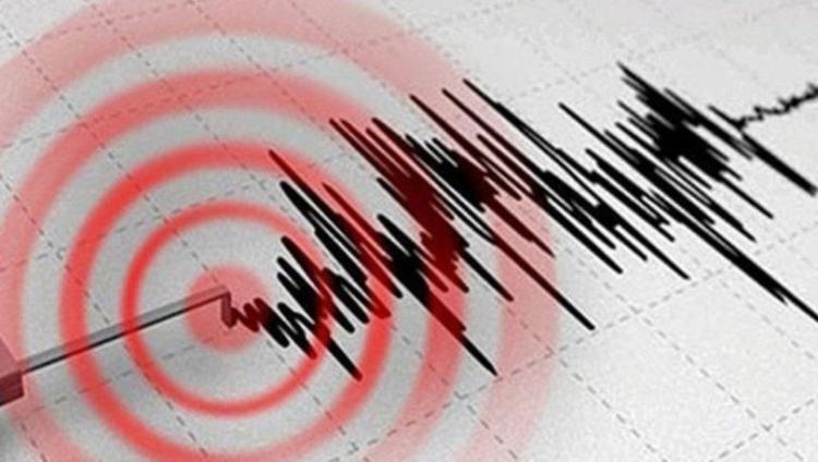 Çınarcık Ve Armutlu'da Deprem Fırtınası