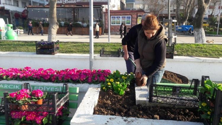 Park Ve Bahçeler Çiçek Açtı