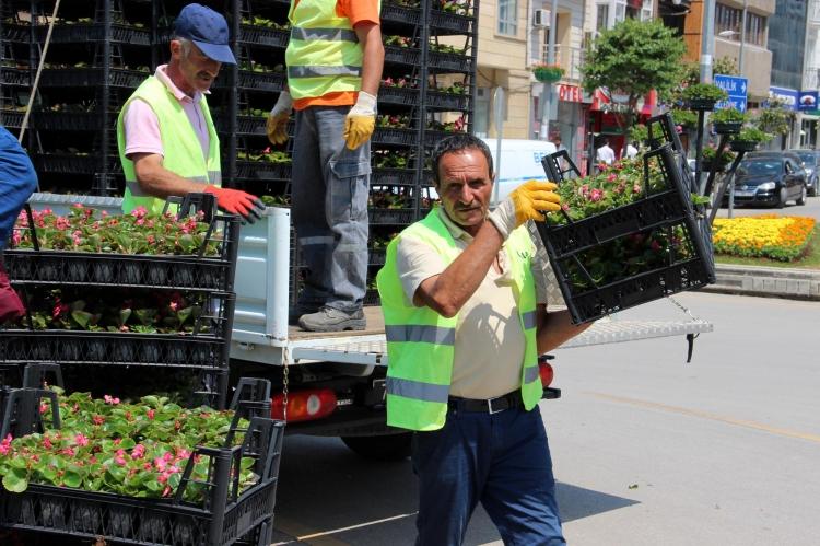 Park Ve Bahçelere 250 Bin Adet Çiçek Dikildi