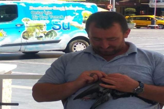 Sakız Yutan Kuşu Vatandaşlar Kurtardı