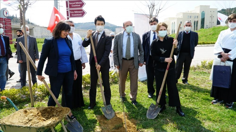 """""""Türk Japon Dostluk Ve Hatıra Ormanı""""na İlk Ağaçları Dikildi"""