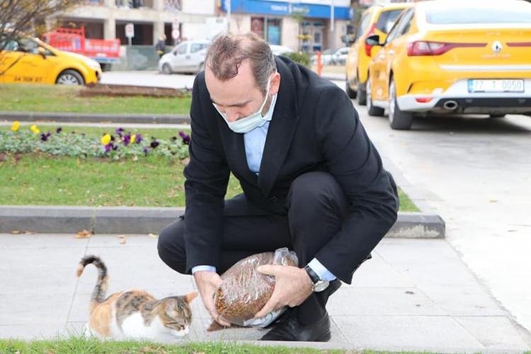 Tutuk Sokak Hayvanlarını Elleri İle Besledi