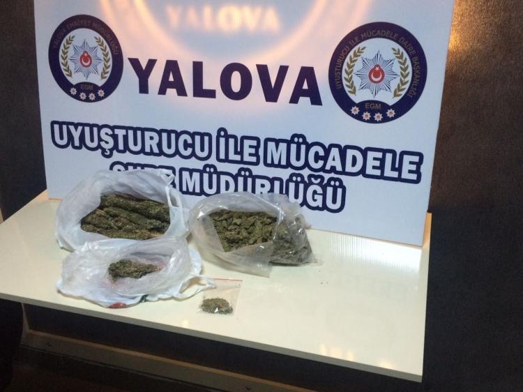 Yalova Emniyetinden Uyuşturucu Operasyonu