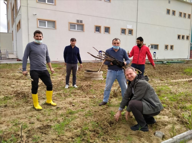 """Yalova Üniversitesi'nde """"Milli Ağaçlandırma Günü"""" Kutlandı"""