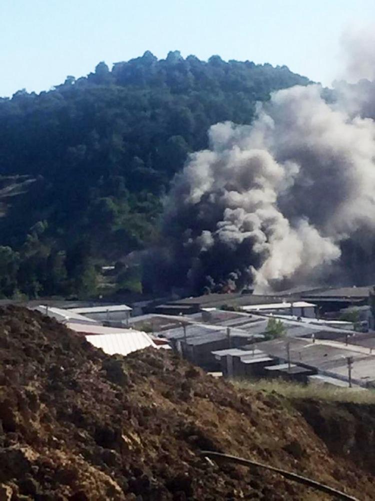 Yalova'da Korkutan Yangın