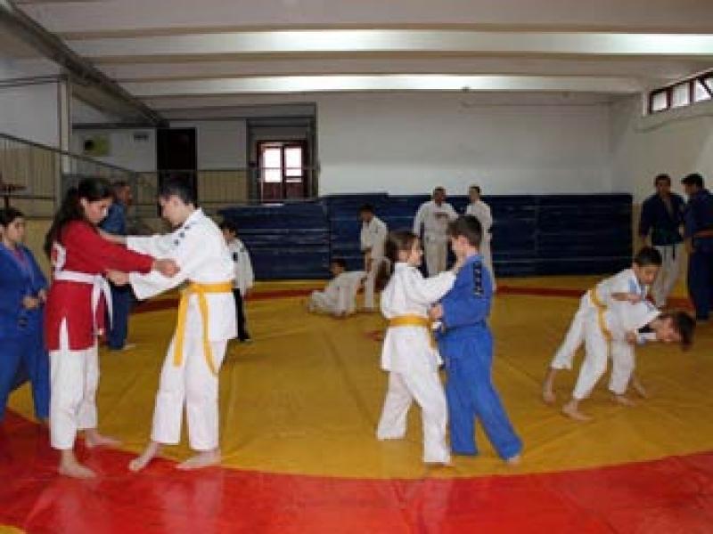 Yalovalı Judocular İşi Sıkı Tutuyor