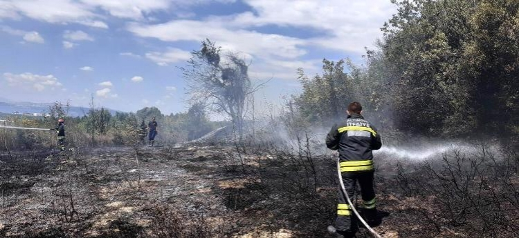5 Dönümlük Ormanlık Alanda Çıkan Yangın Söndürüldü