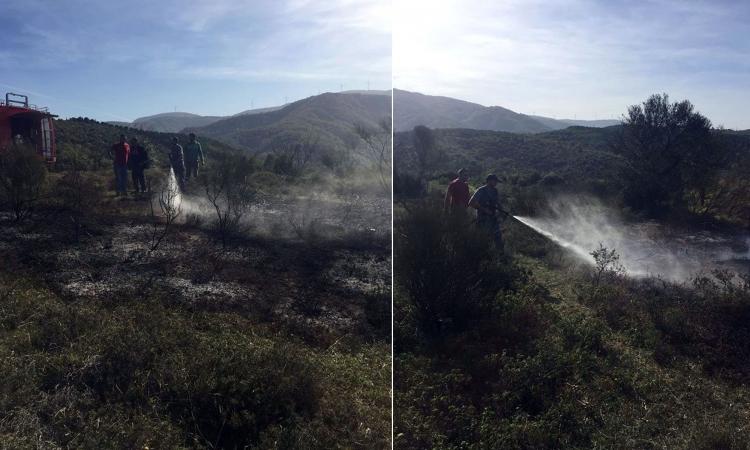 Engere'de Korkutan Yangın